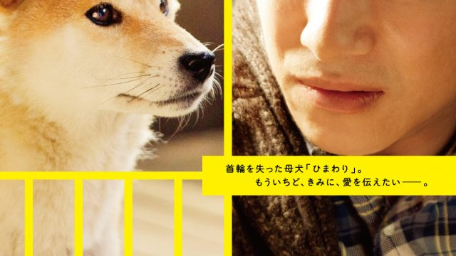7 Days of Himawari & Her Puppies (2013) Episode 1 English Subbed